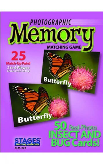insect and bug memory card game