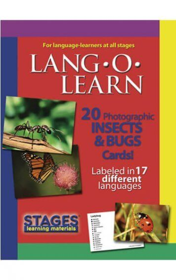 lang-o-learn-insect-and-bugs