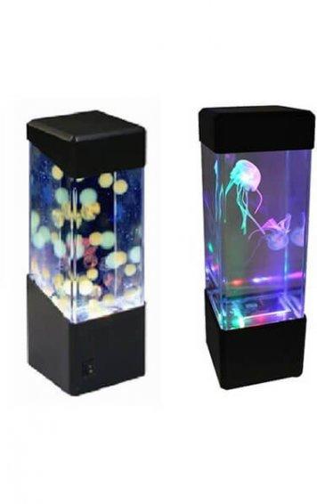 mini sensory fish tank